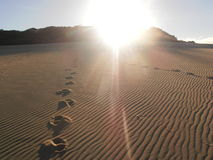 Footsteps through a dune Stock Photography