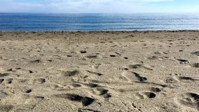 Footsteps on empty beach. Forward movement on empty beach with sea shells in the foreground stock video