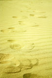 Footsteps in golden sand on the beach Royalty Free Stock Images