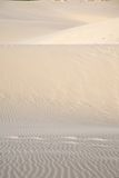 Footsteps on great sand dune Royalty Free Stock Image