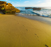 Footsteps in La Jolla. California Royalty Free Stock Photo