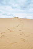 Footsteps leading to the top of Dune of Pilat in France Royalty Free Stock Photos