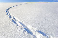 Footsteps in new snow Royalty Free Stock Photos