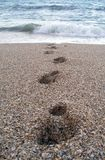 Footsteps from the ocean Stock Photography