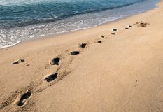 Free Footsteps On A Sandy Gold Beach And Sea Water Royalty Free Stock Photo - 105387605