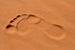 Footsteps in Sahara Stock Image