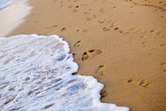 Footsteps on sand Stock Images