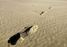 Footsteps in the sand. An ascending diagonal of footsteps on the sandy beach of Langeoog Island (Germany Stock Image