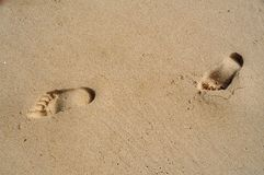 Footsteps on sand. Two footprints on sand of beach Stock Photography