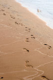 Footsteps on the sand Royalty Free Stock Image