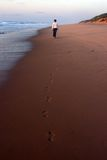 Footsteps in sand. Woman walking in sand at sunrise stock photos