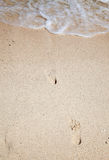 Footsteps on sand Royalty Free Stock Photo