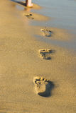 Footsteps in the sand. On the beach stock images