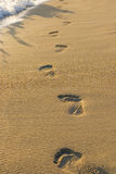 Footsteps in the sand. On the beach Royalty Free Stock Photography