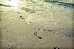 Footsteps in the sand Royalty Free Stock Image
