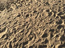 Footsteps in the sand. At the Beach in Denmark Royalty Free Stock Image
