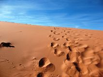 Footsteps in Sand Dune Stock Photography