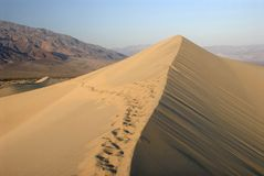 Footsteps in sand dunes. Death valley, California Royalty Free Stock Photography