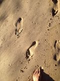 Footprints in the Sand. Foot prints in the sand. Western Cape. Leaving behind the sins of yesterday Stock Image