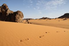 Footsteps in the sand. Footsteps crossing the sand dunes, Sahara Desert, Libya Royalty Free Stock Photography