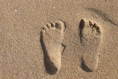 Footsteps at the beach. Footsteps in the sand in India Royalty Free Stock Images