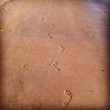 Footsteps in the sand. Many footsteps in the sand on the beach Stock Photo