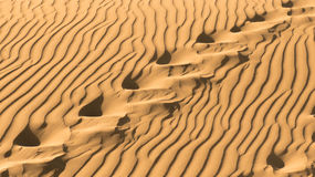 Footsteps in the sand. Of Maspalomas's dunes Royalty Free Stock Images