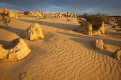Footsteps in the sand in the Pinnacles Desert Stock Photo