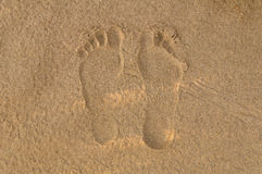 Footsteps on the sand. Footsteps on the  sandy beach Royalty Free Stock Photo