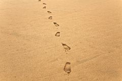 Footsteps in Sand. Footsteps on a sandy beach Stock Image