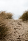 Footsteps in the sand in between sandy grass dunes Stock Images