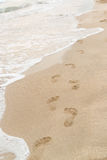 Footsteps in the sand by the shore Stock Images