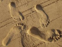 Footsteps in sand. Shot on the beach Stock Images