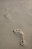 Footsteps in the sand. Walking alone ahead and away Royalty Free Stock Image