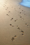 Footsteps on sandy beach Stock Image