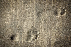 Footsteps in sandy. On the beach Royalty Free Stock Photos