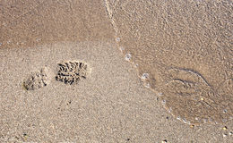 Footsteps in sandy Royalty Free Stock Photo