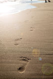 Footsteps on a sandy beach. Wave and sun. Holiday and travel concept. Summer vibes. Footsteps on a sandy beach. Wave and sun. Holiday and travel concept. Summer Royalty Free Stock Image