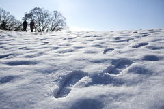 Footsteps in snow. Beautiful landscape Stock Images