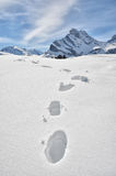 Footsteps on the snow Royalty Free Stock Photos