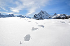 Footsteps on the snow Royalty Free Stock Images