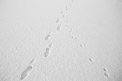Footsteps in the snow. Footsteps in deep snow on sunny winter day Royalty Free Stock Images