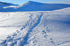 Footsteps in the snow in Dolomites - Pale di San Martino Stock Photo