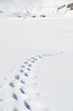 Footsteps on the snow Royalty Free Stock Photography