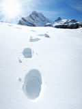 Footsteps on the snow. Stock Image