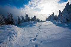Footsteps in snowbound landscape Royalty Free Stock Photo