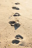 Footsteps on a sunny beach Royalty Free Stock Photo