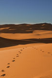 Footsteps to nowhere Royalty Free Stock Image