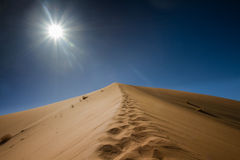 Footsteps on the top of the sand dune Royalty Free Stock Images