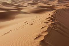 Footsteps. A trail of footsteps leading into the Sahara Desert near Merzouga, Morocco Stock Image